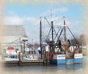 White cap fish market islip ny for White cap fish